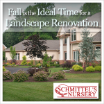fall is the ideal time for a landscape renovation