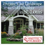 prepare your landscape for cold weather in st louis