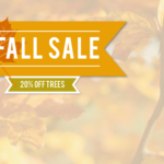 Schmittel's Annual Fall Tree Sale 2017