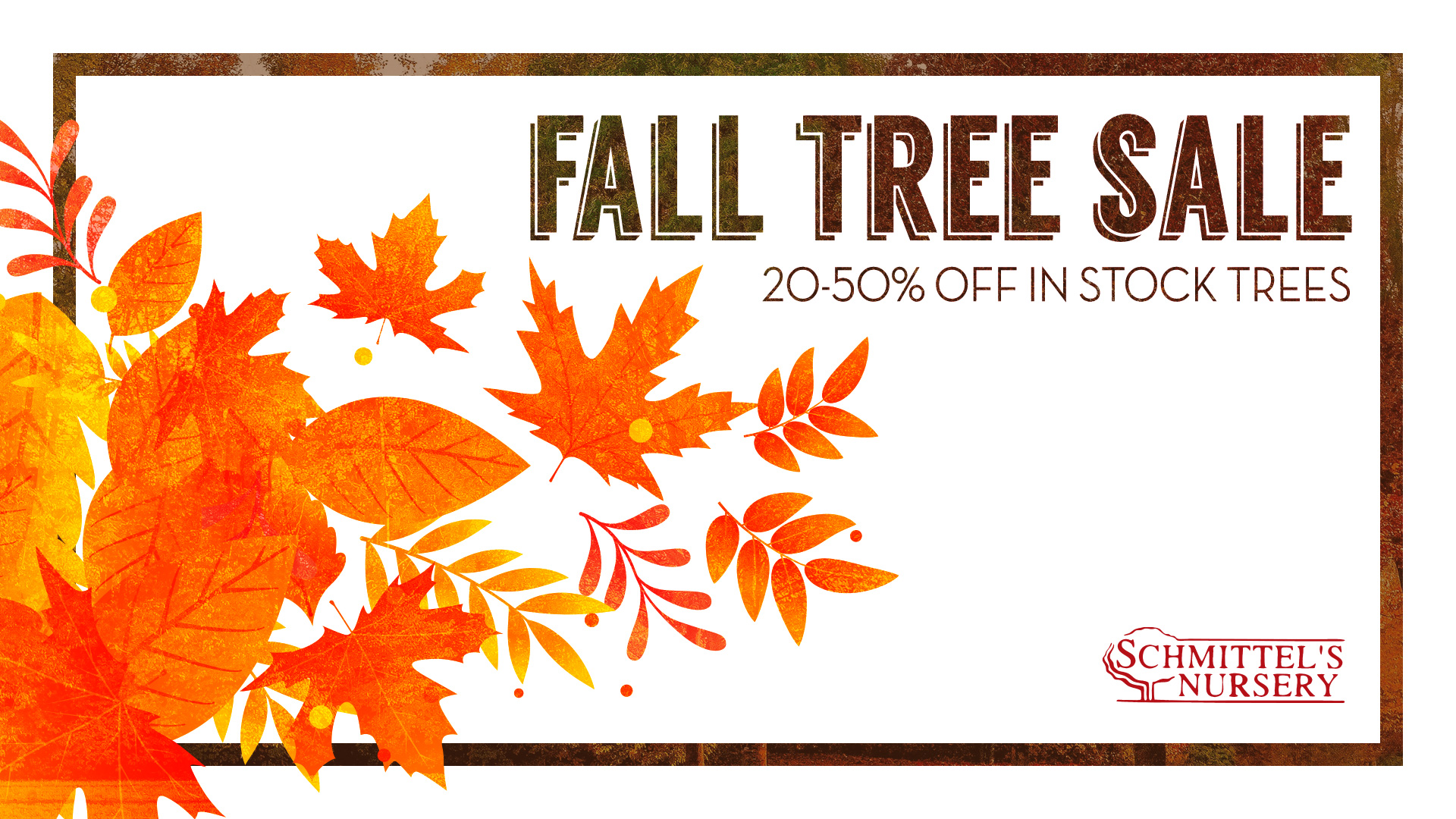 Schmittel's Annual Fall Tree Sale 2018